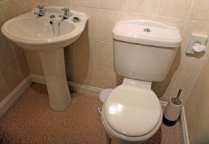 basin-and-toilet1
